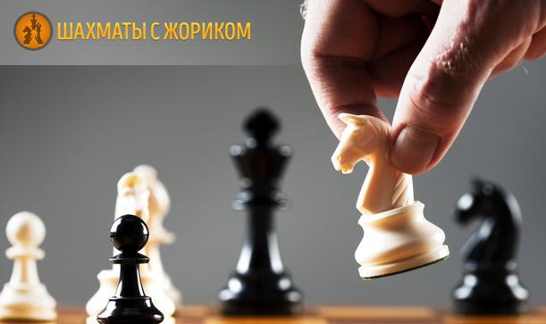 Шахматные Программы Для Решения Задач